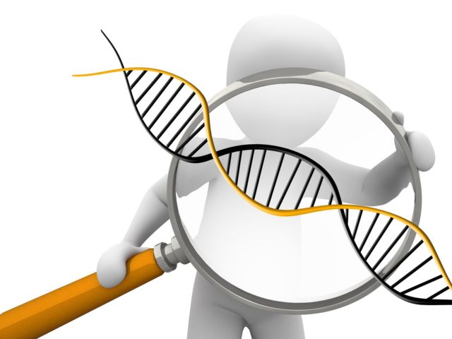 deoxyribonucleic-acid-1500068_1920